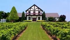 The Tennessee vineyard