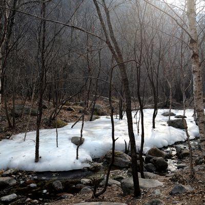 Dernier jour d'hiver à Yudushan - 玉渡山冬天的最后一天