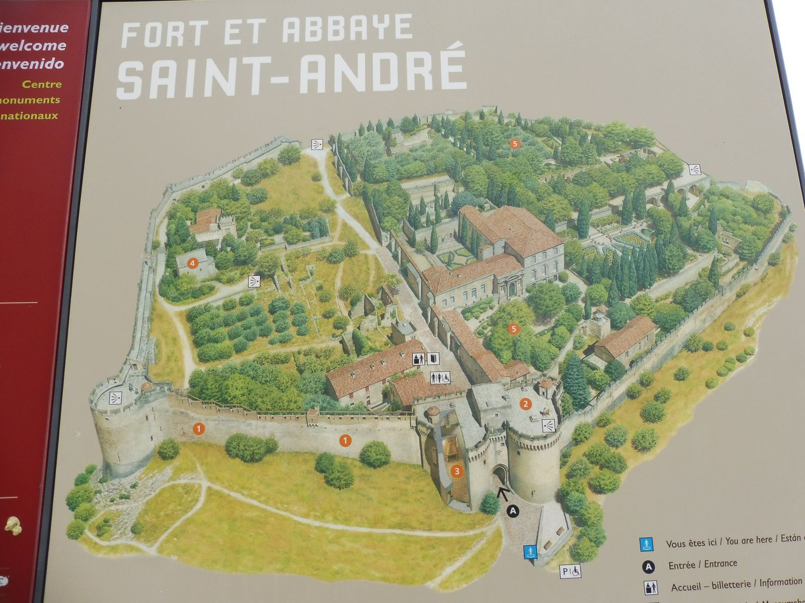 Randonnée à Villeneuve les Avignon.