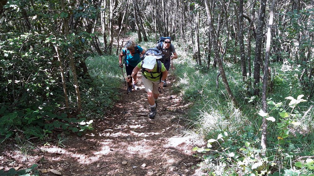 Avant-pays savoyard : L'Abully - Col du mont Tournier