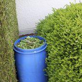 Jardiniers, créer votre solution d'engrais et de répulsif contre les parasites 100% bio ! - Brunoderemaucourt.