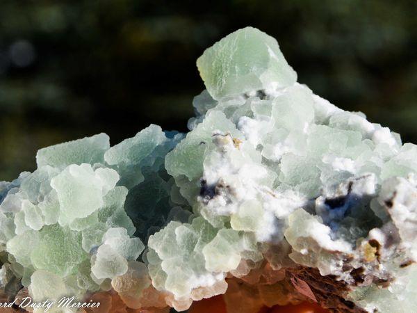 Fluorite with Quartz from Sovietsky Mine, Da l'negorsk, Russia (size: Small cabinet)