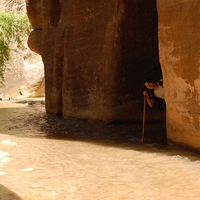 The Narrows - Zion N.P.