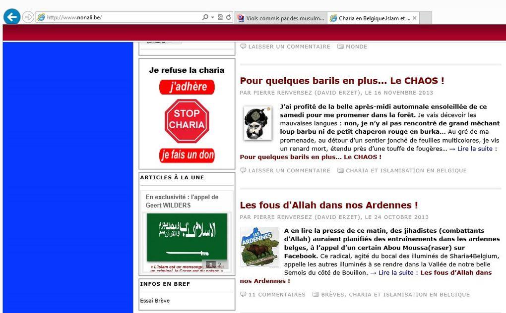 Islamophobie. Iconographie