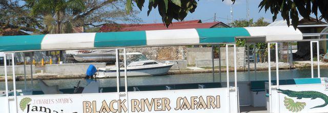 Notre voyage en Jamaïque: Crocodiles.