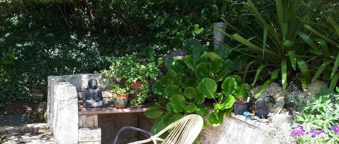 La vie au jardin (diaporama)