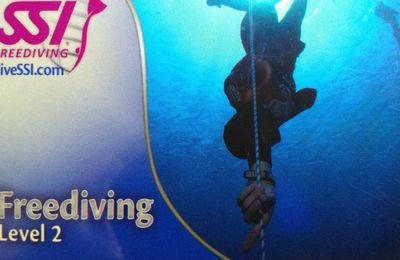 Freedive SSI2