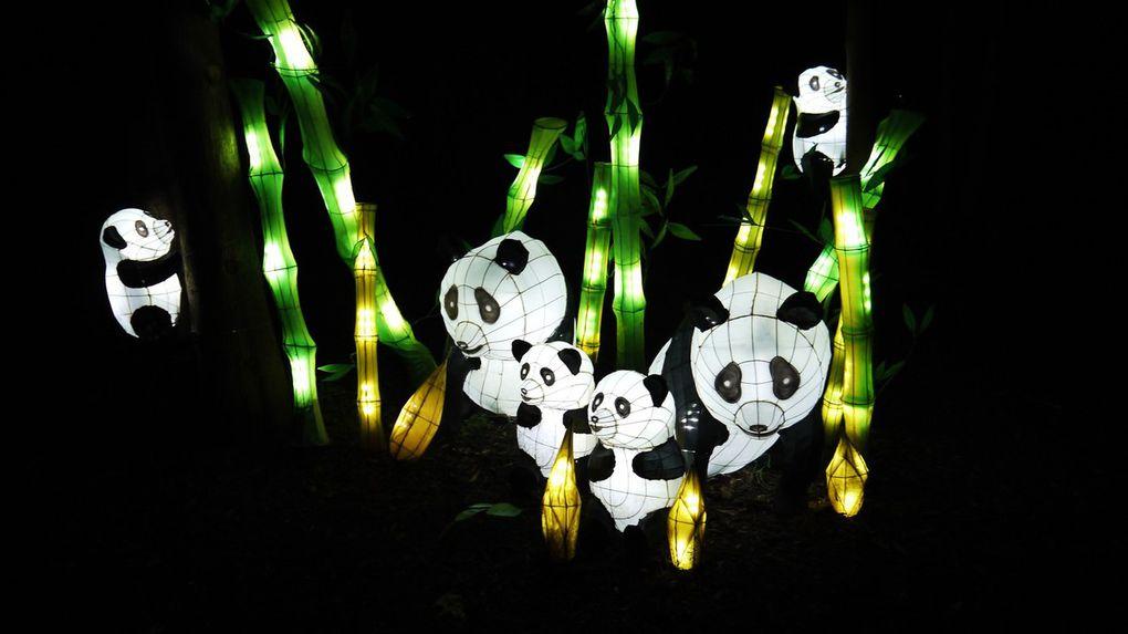 Lampion-Ausstellung im Botanischen Garten