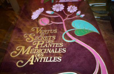 Attention! le syndicat des pharmaciens de Guadeloupe souhaite rappeler la posologie du Virapic  Le sirop n'est pas à prendre en intraveineuse  mais une cuillerée à café matin et soir est conseillée par le laboratoire.