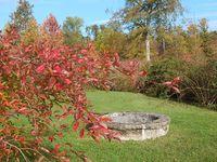 Et des couleurs, de la beauté à tomber amoureux (au pluriel) de l'automne...