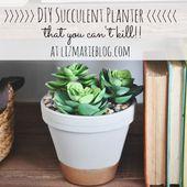 DIY Succulent Planter - Liz Marie Blog