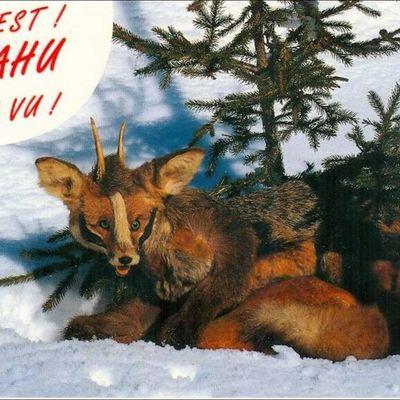 La chasse au Dahu