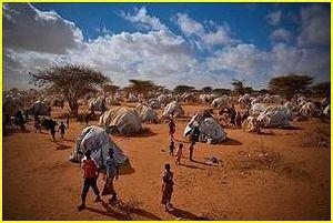Monde : aujourd'hui, c'est la journée mondiale de l'aide humanitaire