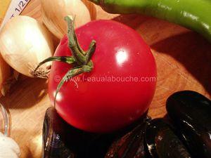 Moules à la Crème de Tomate
