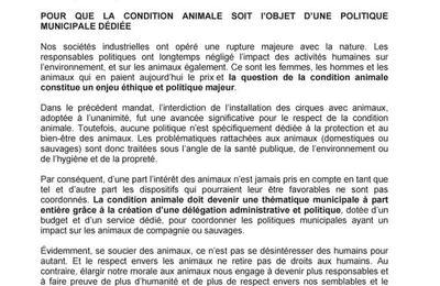 Conseil municipal du 9 octobre 2020 : une motion du groupe Osons pour Hénin-Beaumont pour la condition animale