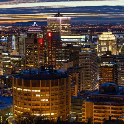 No. 180 : Montréal vue du Mont-Royal (12 janvier 2021)