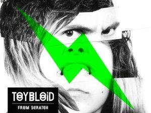toybloïd, un groupe de rock français formé en 2007 avec 2 filles et un garçon