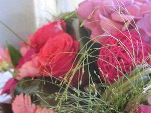 Puisqu'on est dans les fleurs, on y reste ! (2)