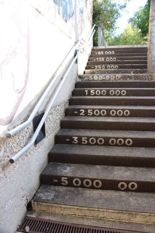 Collection d'escaliers