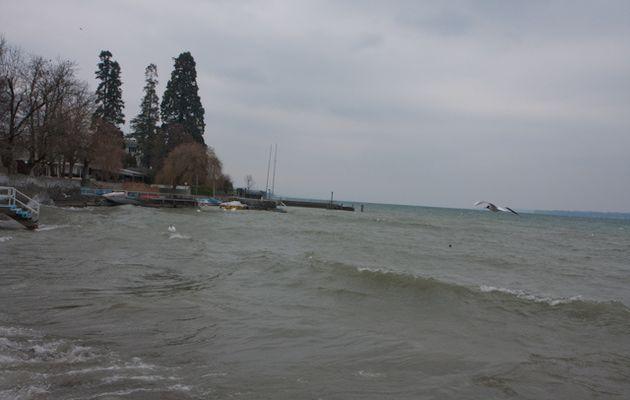 9-12 mars, tempête givrée sur le lac Léman à Genève par Alain