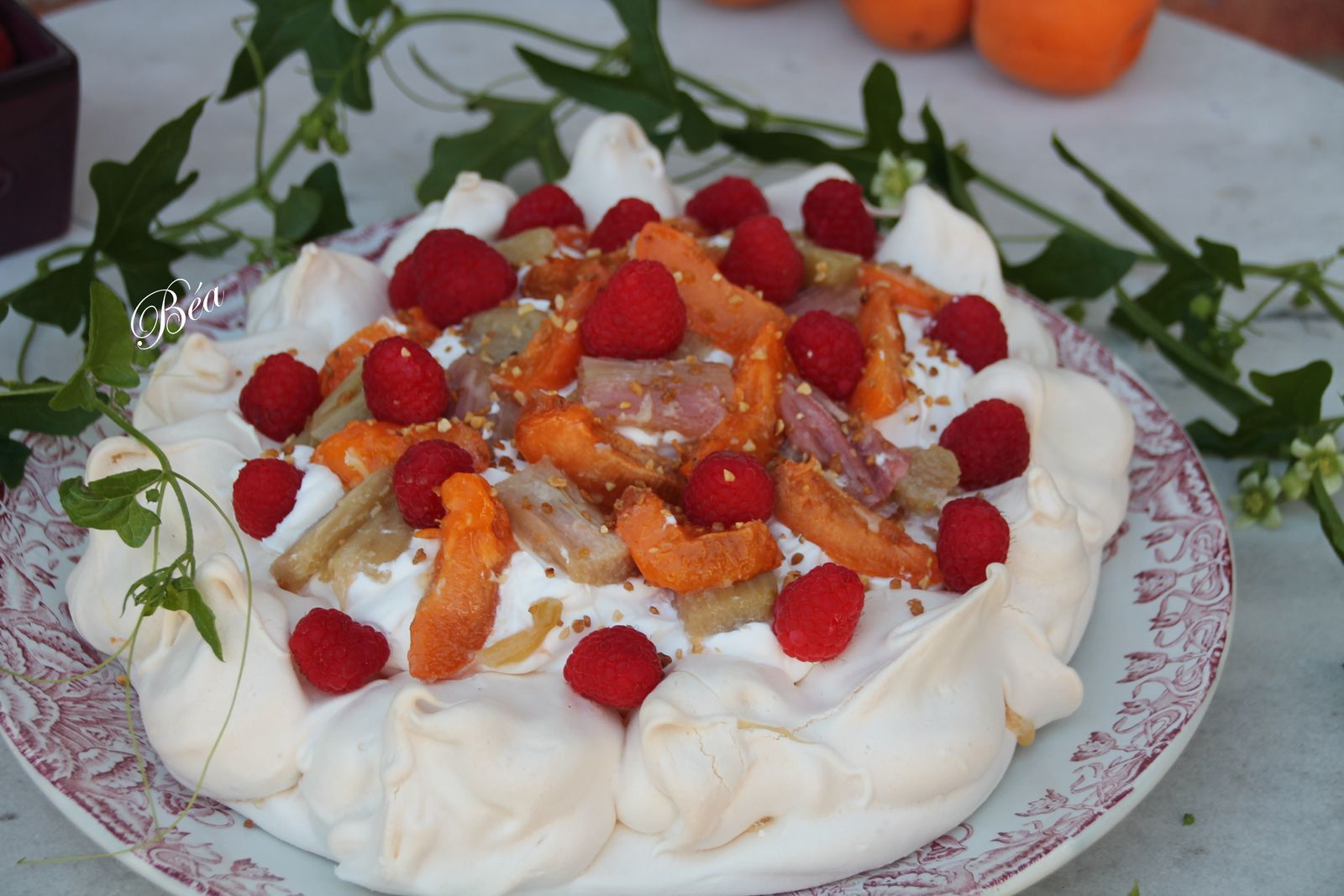 Pavlova à la rhubarbe rôtie, abricots et framboises