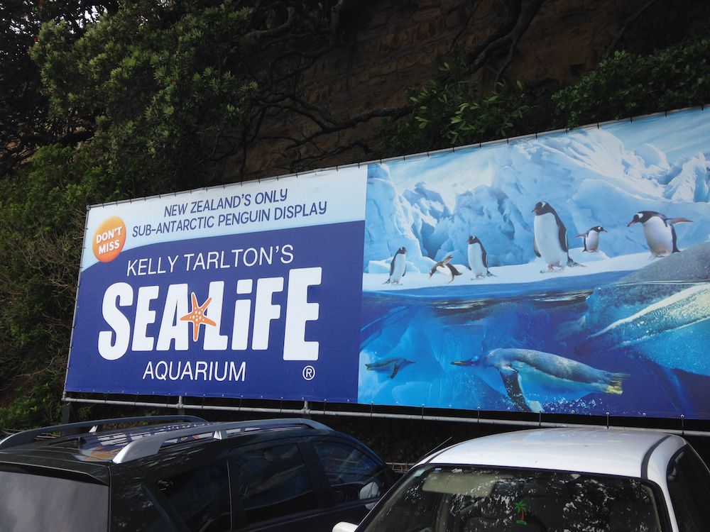 Kelly Tarlton's Sealife Aquarium - Auckland