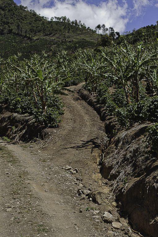 Voici quelques images documentaires afin de vous faire découvrir ce petit paradis.Ces photos ont été prises au niveau de la mer, dans les volcans ou à 3000 m d'altitude dans la Cordillière.