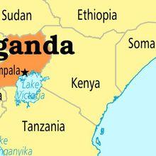 Công ty ship tốc độ sang Uganda giá rẻ