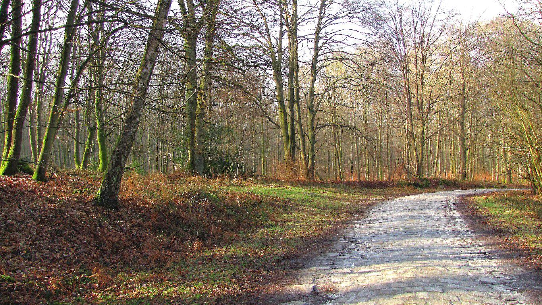 carrefour_Route du Pendu_Chemin de Longpont