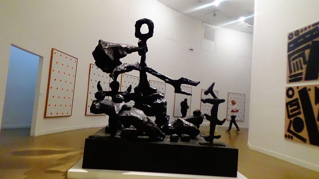 Visite du Musée d'Art Moderne de la Ville de Paris
