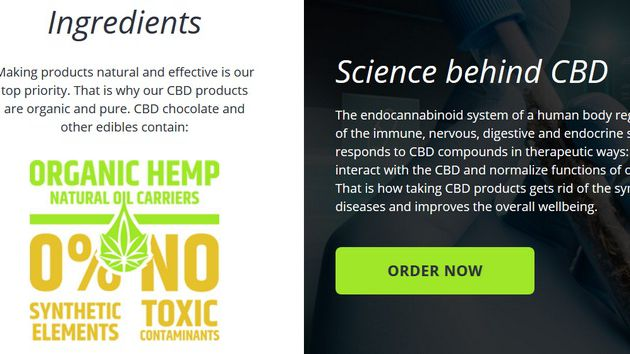 Ought to CBD Be Part Of Your Wellness Routine?
