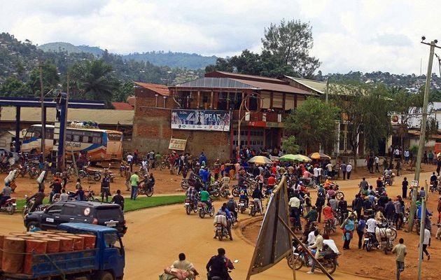 RDC : 12 soldats congolais tués dans l'offensive contre les ADF