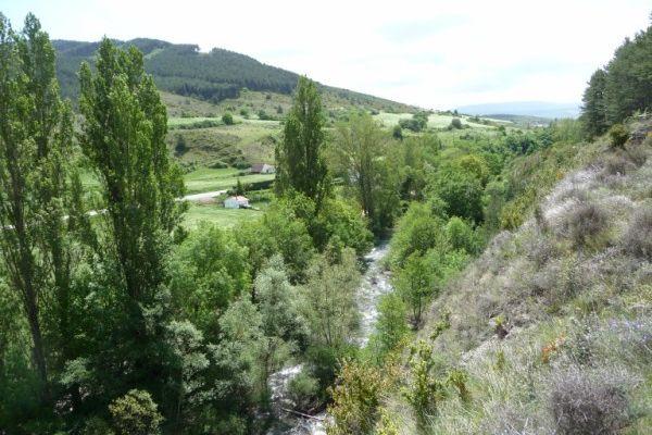 Sur les Chemins de Saint Jacques...(2009)