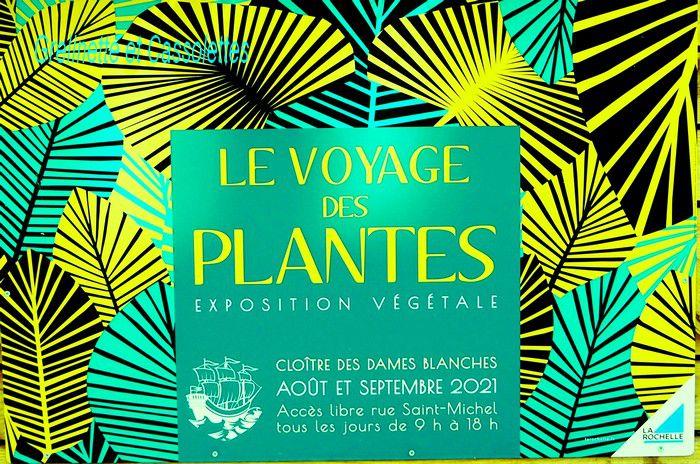 Le Voyage des Plantes, au Cloître des Dames Blanches