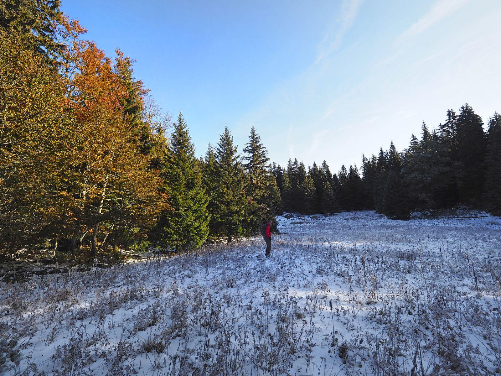 L'approche tôt le matin, dans les premières petites neiges d'automne.
