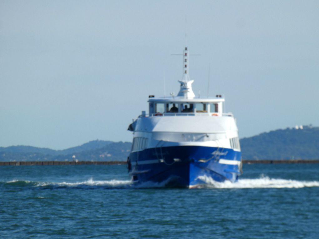 MEDITERRANEE  IX , en petite rade de Toulon et se dirigeant vers la Seyne sur Mer  le 12 novembre 2018