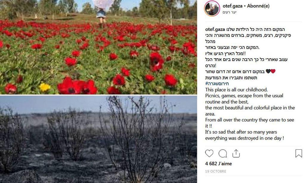 Le compte instagram de 8 adolescentes vivant sur la frontière de Gaza