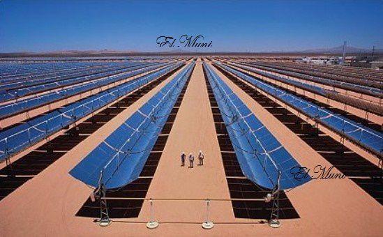 Fuente de energía solar para el mundo: parábolas solares en el Sahara.- El Muni.