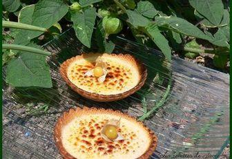 tatelettes à la crème catalane