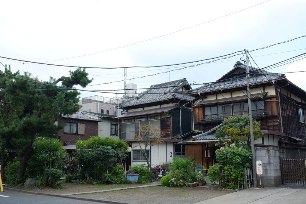 Cimetière de Yanaka et son quartier