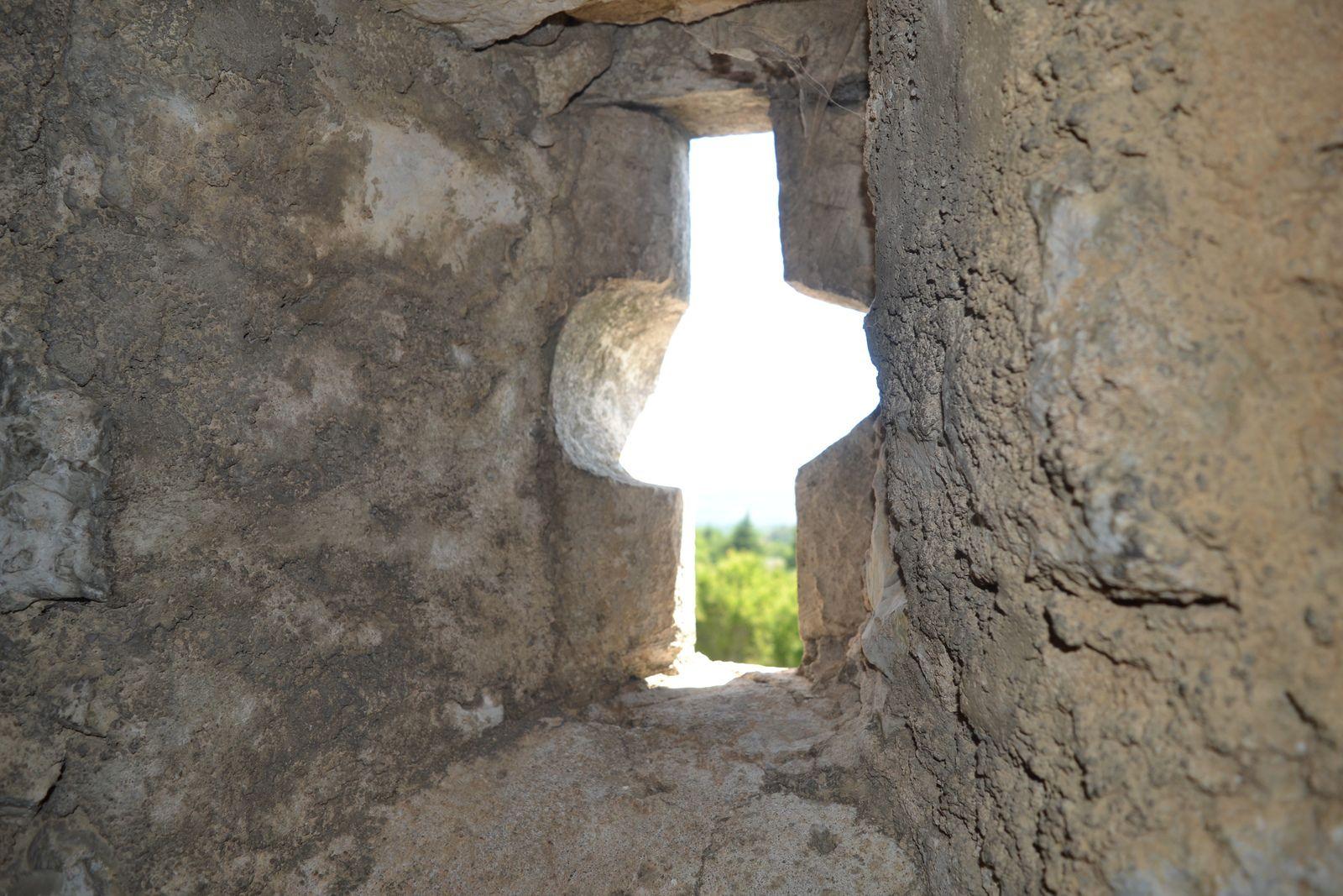 Chapias se trouve en Ardèche.C'est un hameau du village de Labeaume qui se détache dans la garrigue sud-ardéchoise par une tour surmontée d'une statue de la Vierge.