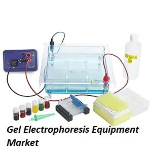 Growth Opportunities in the Global Gel Electrophoresis Equipment Market Research