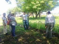 Relevamiento de trabajos productivos en Gancedo