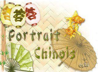 Le portrait chinois de Mr X.