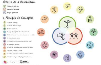 Les douze principes de la permaculture selon David Holmgren
