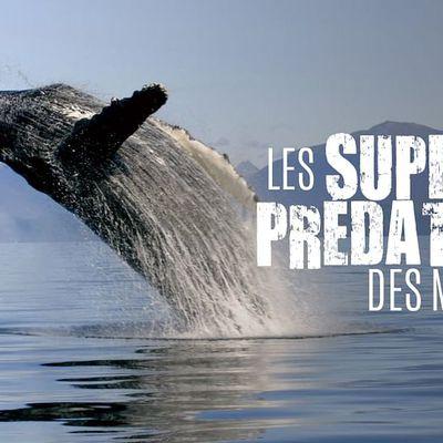Toujours sur ARTE ;-)  -  Les super-prédateurs des mers