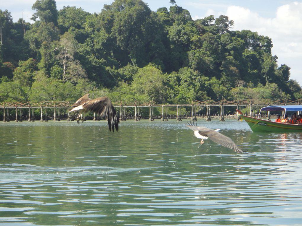 Around Langkawi island