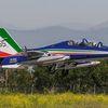 """Aermacchi MB339A PAN 55 years """"Frecce Tricolori"""""""