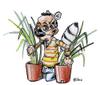 Le repaire du lemurien