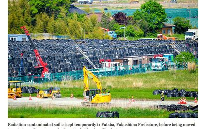 "Recycling Fukushima waste a ""massive headache"" for Govt."